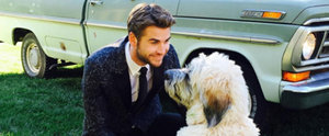 Liam Hemsworth's Hot and Hilarious Instagrams Deserve an A+