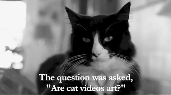 The Internet Cat Video Festival Gets a New Home