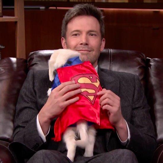 Ben Affleck Pup Quiz on The Tonight Show 2016