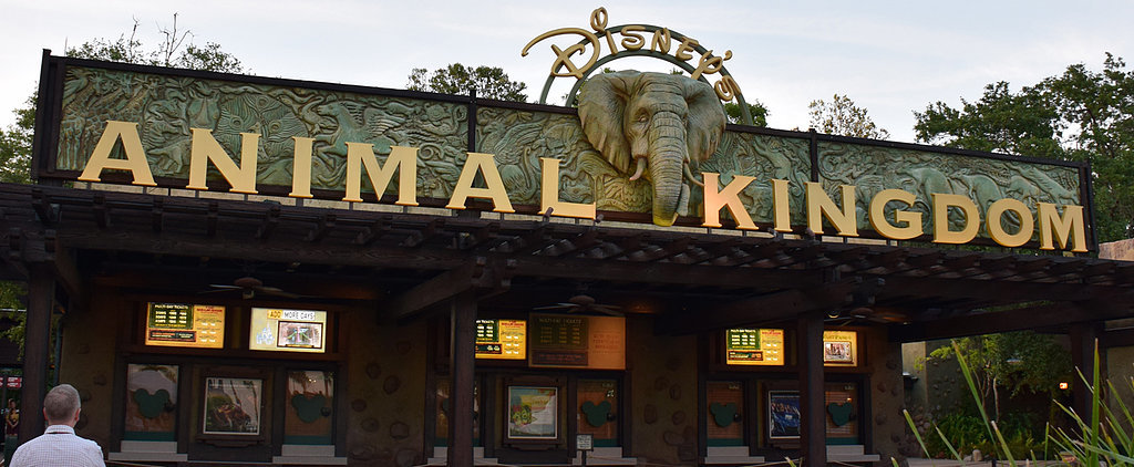 8 Reasons Your Family Vacation to Disney World Won't Be Complete Without a Night Visit to Animal Kingdom