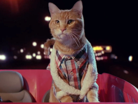 Keanu Gets an All-Cat Trailer and It's Fluffing Fantastic