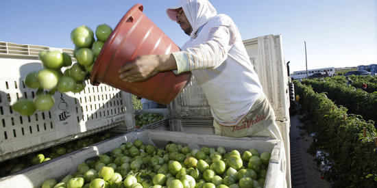 Farm Workers Are Taking On Poor Pay And Conditions -- And Winning