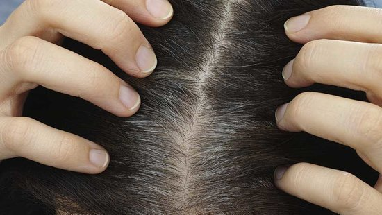 Once And For All, Does Pulling Out Gray Hair Cause More To Grow Back?