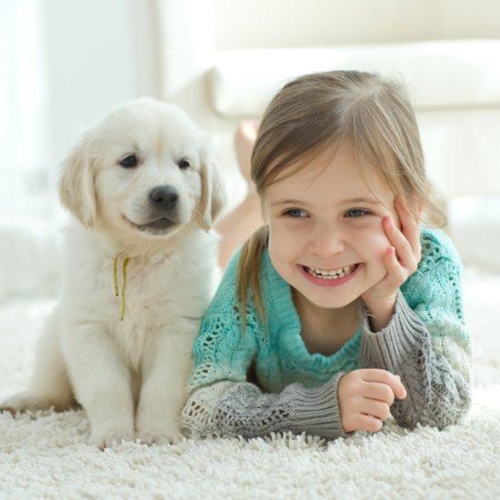 Dog Making Baby Laugh | Video