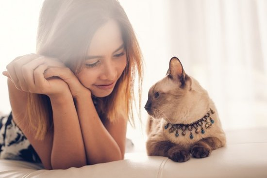 6 Things NOT to Say to a Single Person Who Has Cats