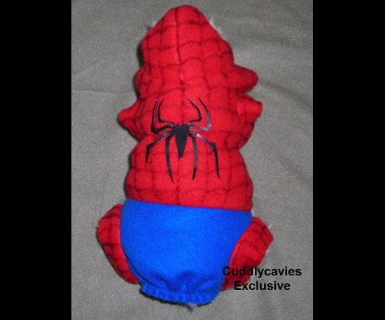 Spider Piggy