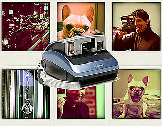 Sugar Shout Out: Polaroid's Triumphant Return From Extinction