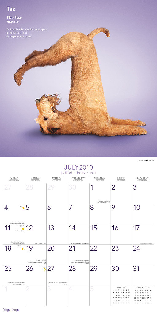 July — Plow Pose