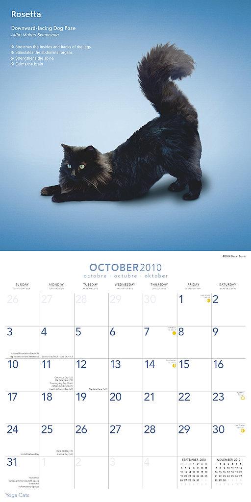 October — Downward-Facing Dog Pose
