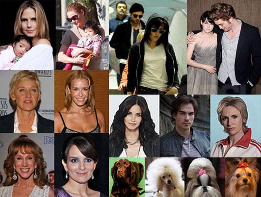 Best of 2009 Slideshows, Quizzes, & Polls!