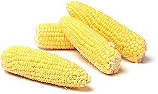 Easy Corn Salad Recipe 2009-08-24 13:41:28