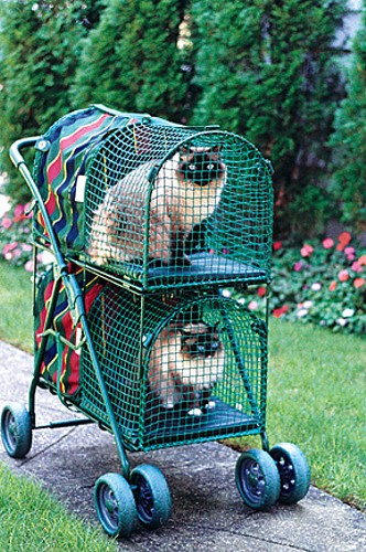 Double Decker KittyWalk Pet Stroller