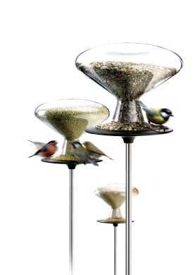 Feed the Birds: Bird Table and Millet