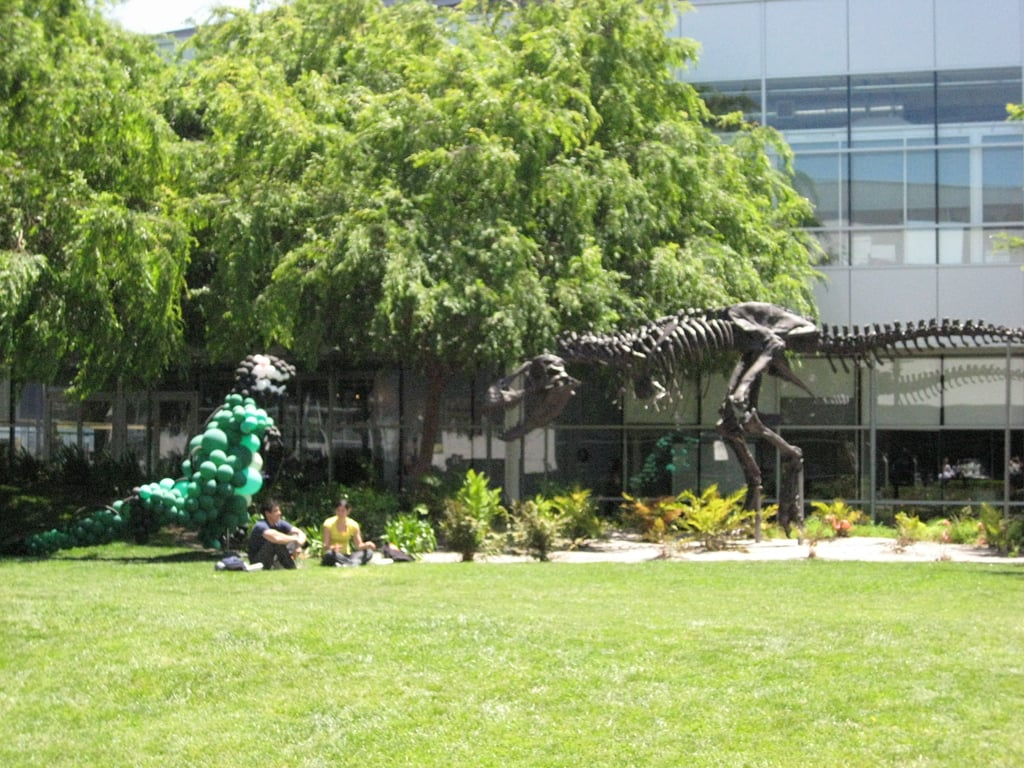 Art Adorns the Campus