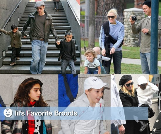 Lil's Favorite Families