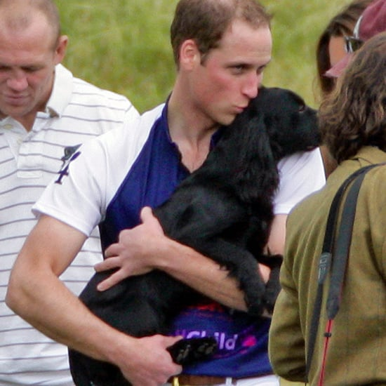 Kate Middleton and Lupo at UK Polo Match Pictures