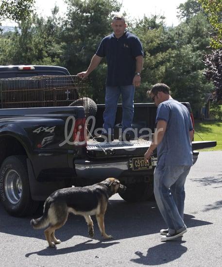 Jon Gosselin Returns Family Dogs to Breeder