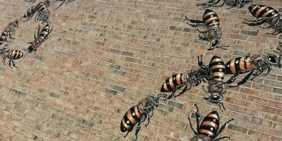 An Artist Is Painting 50,000 Bees In Murals Around The World