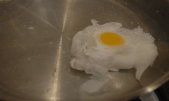 Have You Ever Poached An Egg?
