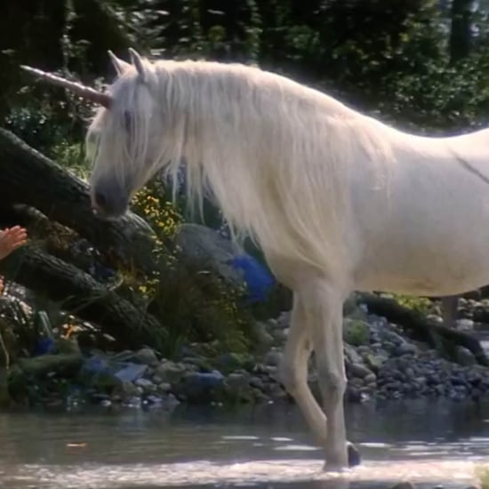 Study Proves Unicorns Are Real | Video