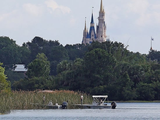 Disney World Student Employee Fired After Tweeting a Break Room Sign Addressing On-Site Alligators