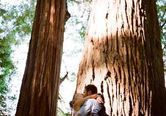 Redwood-Filled Ceremony