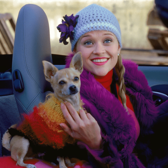 Bruiser Woods Dog From Legally Blonde Dies