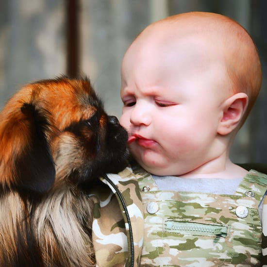 Videos of Babies and Dogs