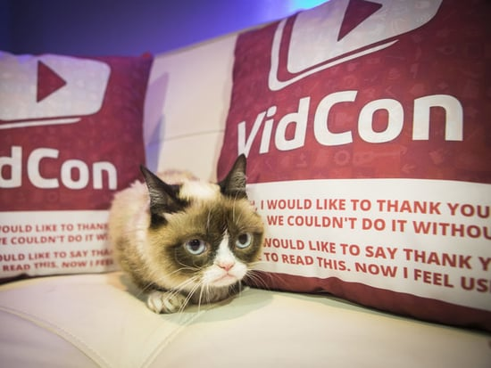 VidCon Takes Over Anaheim, Proves The Internet Is Taking Over The World