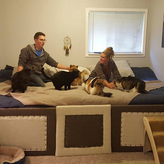 Guy Makes 11-Foot Bed Big Enough For Pets