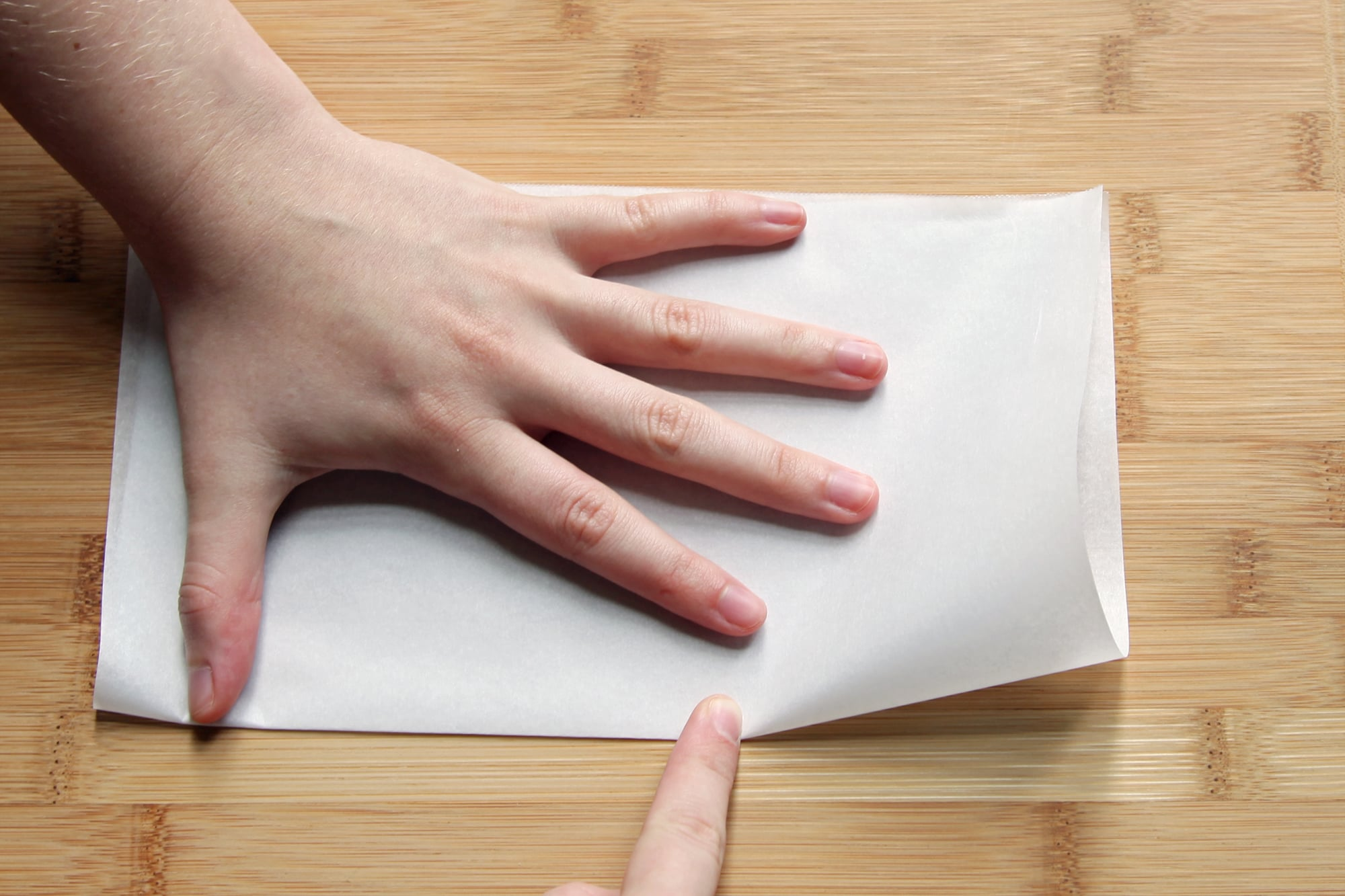 Fold the Square in Half