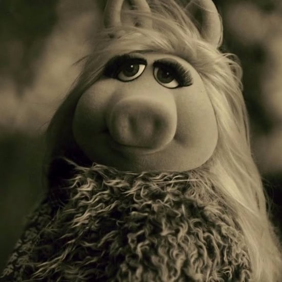 The Muppets Spoof of Adele's Hello