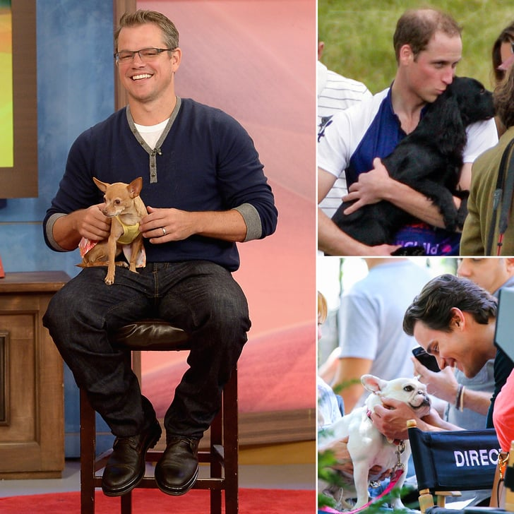 Hot Hollywood Guys Are Even Hotter When Paired With Pups
