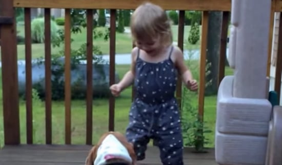 Rescued Basset Hound Finds a Playmate