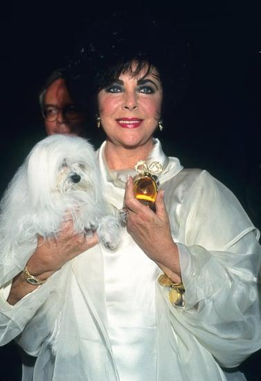 Elizabeth Taylor: Surprising Facts About Her Fragrances 2011-03-23 14:42:16