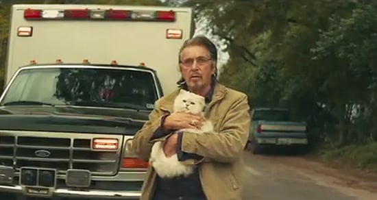 Al Pacino Is a Sad Crazy Cat Man in This 'Manglehorn' Trailer