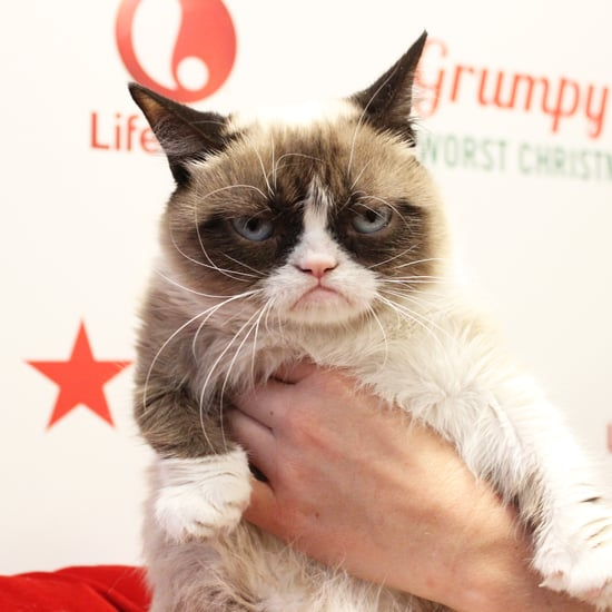 Grumpy Cat's Worst Christmas Ever Interview