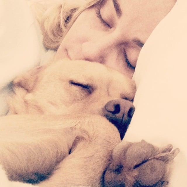 LC loves to snuggle with her pups. Source: Instagram user laurenconrad