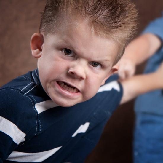 Minnieland Academy Baby Fight Club
