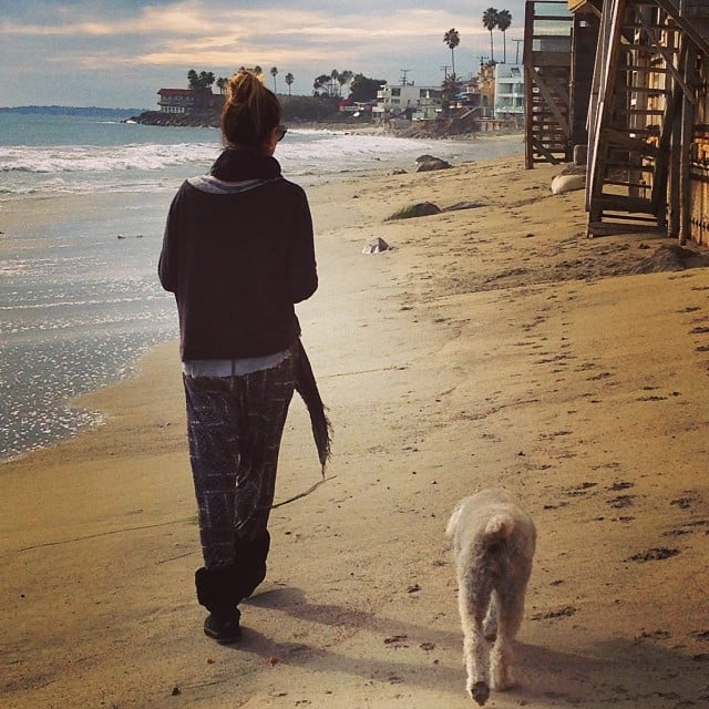 Daisy Fuentes took a post-Thanksgiving stroll with her dog on the beach.  Source: Instagram user Daisy Fuentes