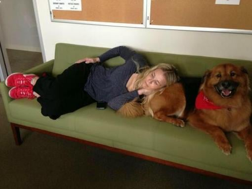 Chelsea Handler took a nap with (and on) her dog at the office. Source: Instagram user chelseahandler