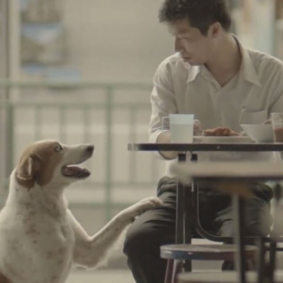 Heartwarming Thai Commercial