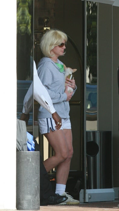 Britney Still Roams While Kev Keeps it Together for Kids