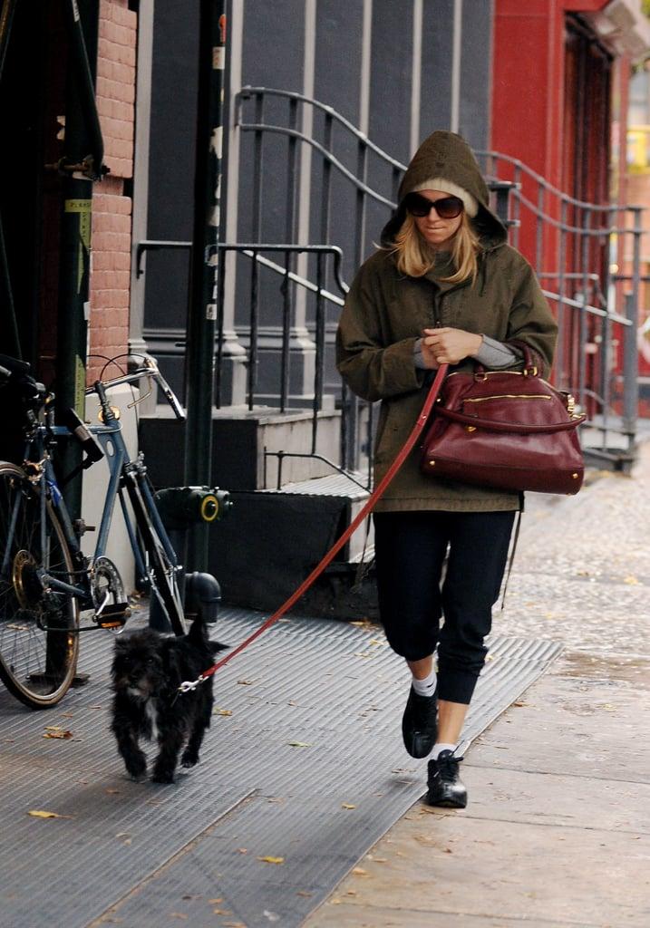 Sienna Miller Walking Her Dog in SoHo