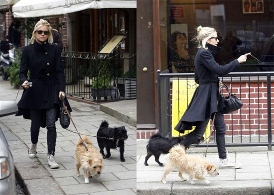 Sienna Walks Her Dogs While Plotting Her Next Hollywood Takeover