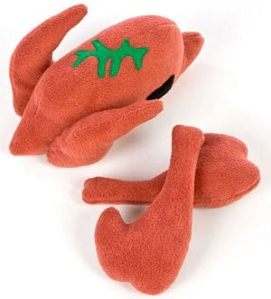 Gobble, Gobble Gift Guide: Turkey Toys For Thankful Dogs