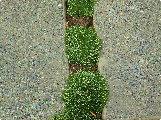 DIY: Concrete Garden Steps With Glass
