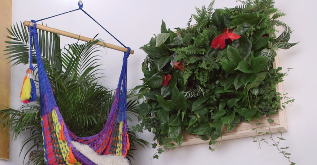 This DIY Is a Vibrant and Unexpected Way to Decorate Your Home With Plants