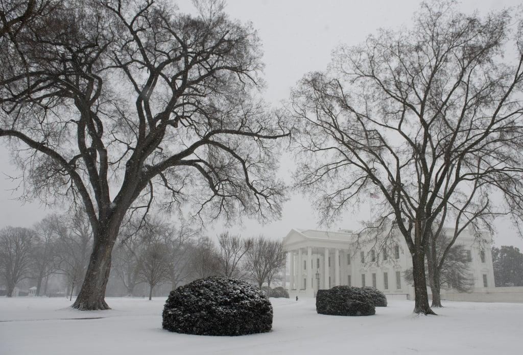 Snow covered the White House lawn in Washington DC.