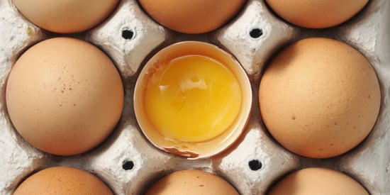 Your Guide To Buying Eggs At The Grocery Store